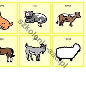 Memo zwierzęta